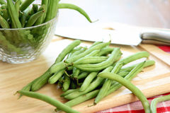 Haricot de Bush, haricot vert Photo libre de droits
