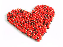 haricot Rouge-noir Images libres de droits