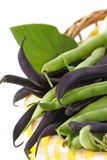 Haricot vert. Images stock