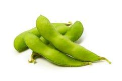Haricot vert de soja Images libres de droits