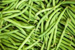 Haricot vert vert frais Photo libre de droits