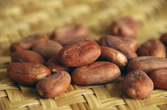 Haricots crus de cacao Photo stock