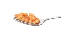 Haricots cuits au four sur la fourchette image stock