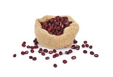 Haricots d'Adzuki, haricots d'Azuki, haricots rouges sur le fond blanc image libre de droits