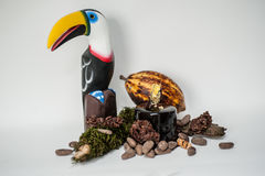 Haricots de cacao Photographie stock