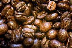 Haricots de café express Images stock