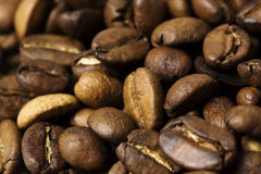 Haricots de Cofee Photo libre de droits