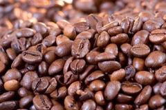 Haricots de Cofee Photographie stock libre de droits