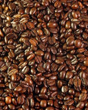 Haricots de Coffe Photo libre de droits