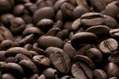 haricots de coffe - café express de caffe Images libres de droits