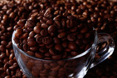 Haricots de Coffe dans la tasse en verre image stock