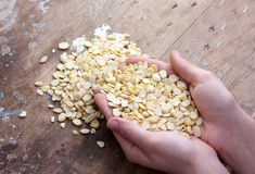 Haricots de soja Photo stock