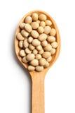 Haricots de soja dans la cuillère en bois Photographie stock libre de droits