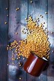 Haricots de soja dans la tasse en métal image libre de droits