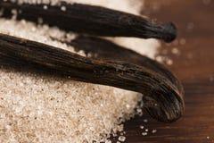 Haricots de sucre et de vanille photos libres de droits