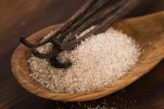 Haricots de sucre et de vanille photo libre de droits