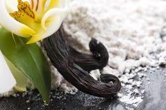 Haricots de vanille avec du sucre et la fleur aromatiques photo stock