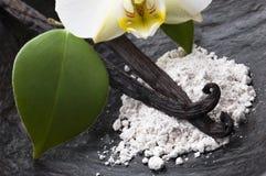 Haricots de vanille avec du sucre et la fleur aromatiques images libres de droits