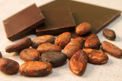 Haricots et barres de chocolat Images libres de droits
