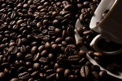 Haricots et cuvette de Coffe Image libre de droits