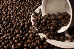 Haricots et cuvette de Coffe Photos stock