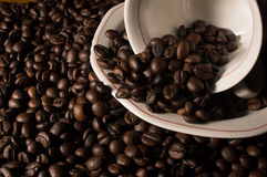 Haricots et cuvette de Coffe Photo libre de droits