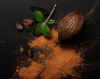 Haricots et poudre de cacao d'isolement Images stock