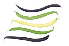 Haricots instantanés de cire pourpre, verte et jaune Images stock