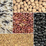 Haricots, lentilles, riz, pois chiches Photo libre de droits