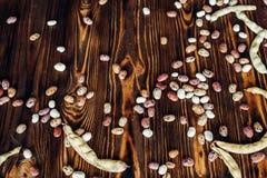 Haricots multicolores Image libre de droits
