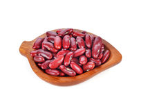 Haricots nains rouges Images stock