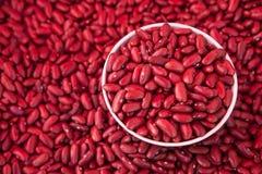 Haricots nains rouges dans une tasse Image stock