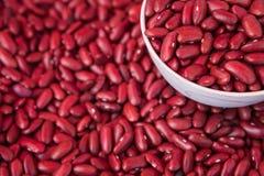 Haricots nains rouges dans une tasse Photos libres de droits
