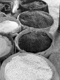 Haricots noirs et blancs Image libre de droits