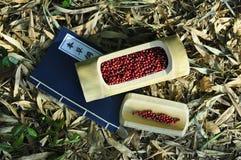 Haricots rouges image libre de droits