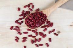 Haricots rouges dans une cuillère en bois Photographie stock libre de droits