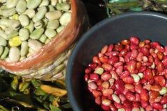 Haricots rouges et fèves. Images libres de droits