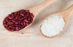 Haricots rouges et riz dans cuillères en bois Images libres de droits