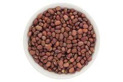 Haricots rouges secs d'azuki dans la cuvette blanche, d'isolement sur le fond blanc images stock