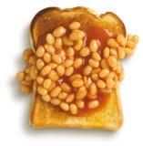 Haricots sur le pain grillé, Images libres de droits