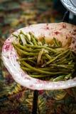 Haricots verts à l'oignon caramélisé Photos stock