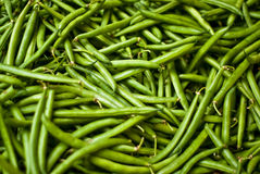 Haricots verts Photo stock