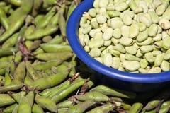 Haricots verts Image libre de droits