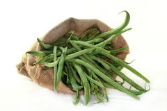 Haricots verts Images stock