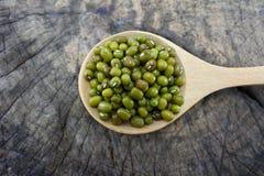 Haricots verts dans une cuillère en bois Photo stock