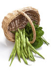 Haricots verts et salade Photographie stock