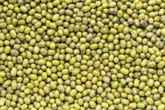 Haricots verts, fèves de mung Photographie stock libre de droits
