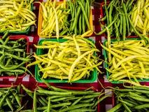 Haricots verts frais Photographie stock libre de droits