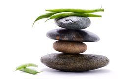 Haricots verts - pyramide de nourriture Images stock