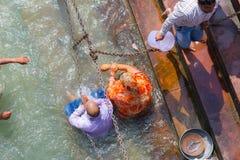 Haridwar, Índia - 11 de março de 2017: povos não identificados que banham e que tomam abluções no Ganges River nos ghats santamen Foto de Stock Royalty Free